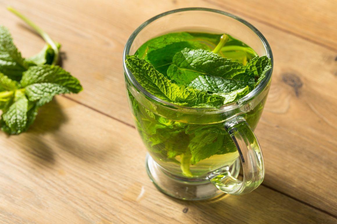Homemade Hot Fresh Mint Tea