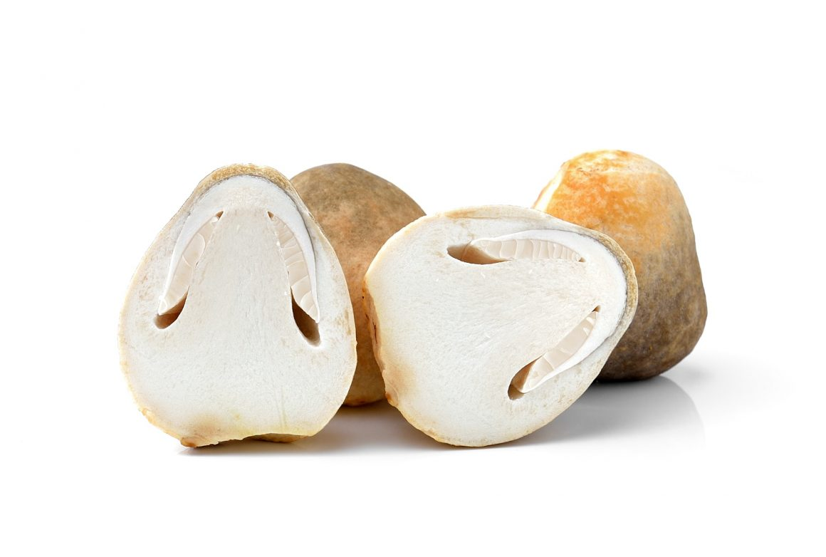 Fresh rice straw mushrooms,Volvariel la volvacea on white backgr